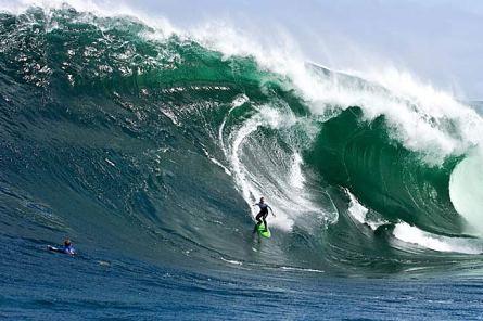 Surfing in Tasmania