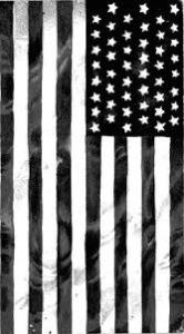USAflagblack&white