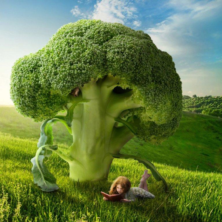 green tree by Shorra deviantart